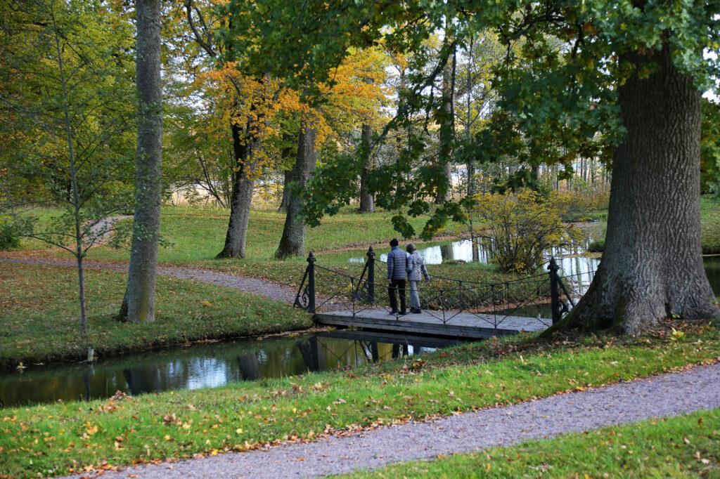 Två personer går över bro i park/Two people crossing a bridge in a forest
