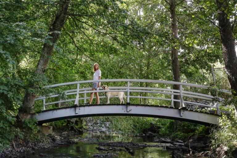 Kvinna och hund på bro